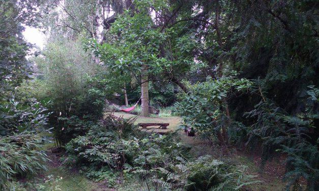 Estetika lesních zahrad