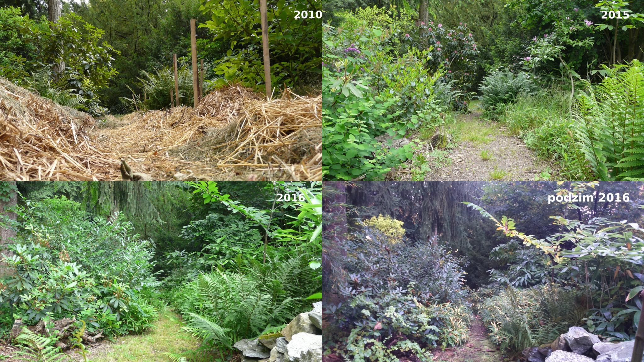 promeny v zahrade