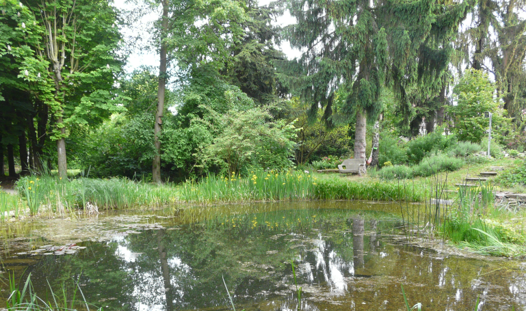 Jedlé lesní zahrady – Plzeň